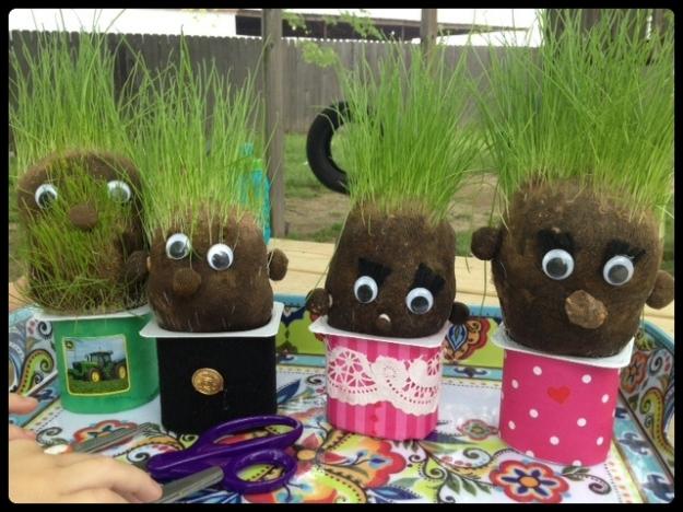 grass heads before