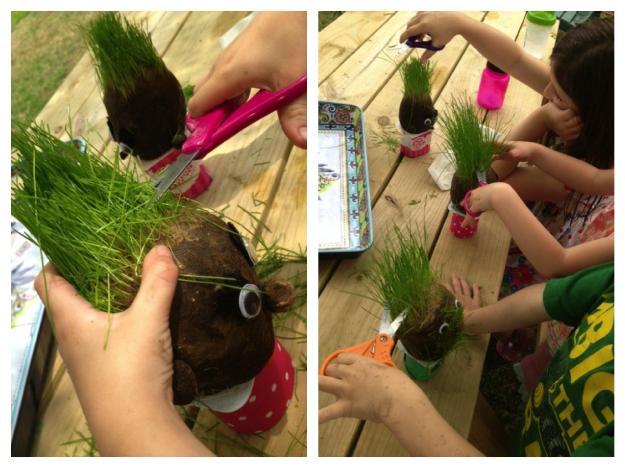 grass heads get haircuts