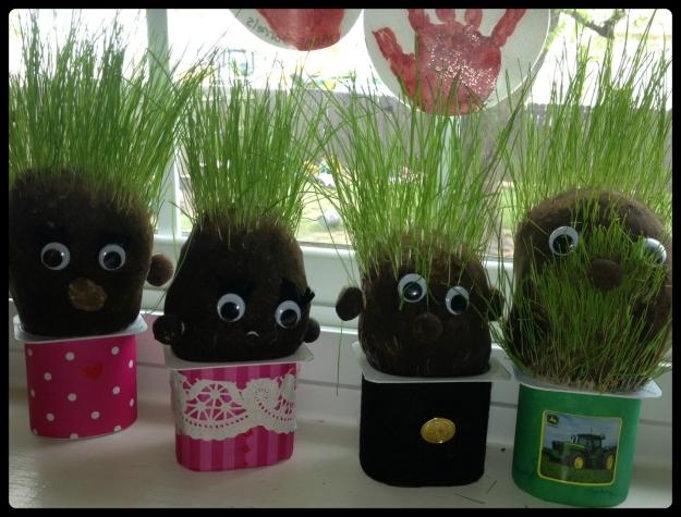 grass heads in the kitchen