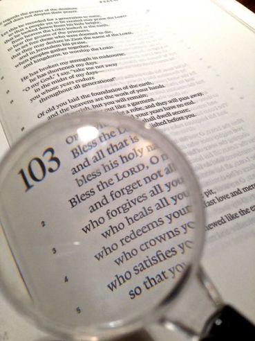 ObservePsalm103Day-20102814